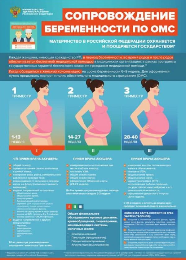 Памятка по сопровождению беременности по ОМС