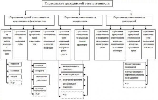 Подробная классификация видов гражданской ответственности